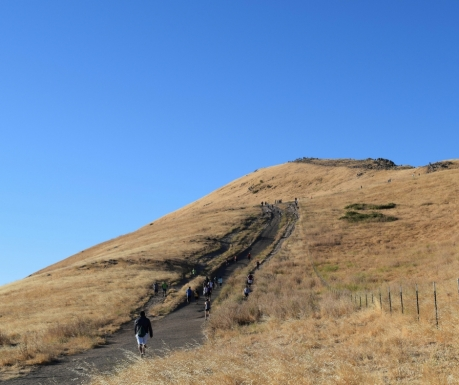 Mission Peak Last Stretch