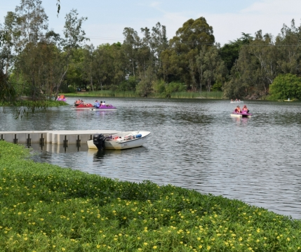 Vasona Boats
